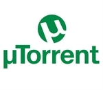 Torrent do Brasil